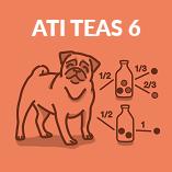 course-ati-teas-6