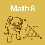 Math 8