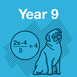 Year 9 Maths