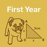 First Year Maths