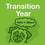Transition Year Maths