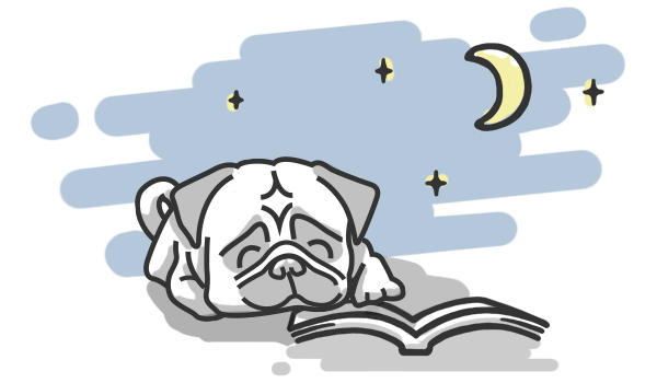 Illustration pug night