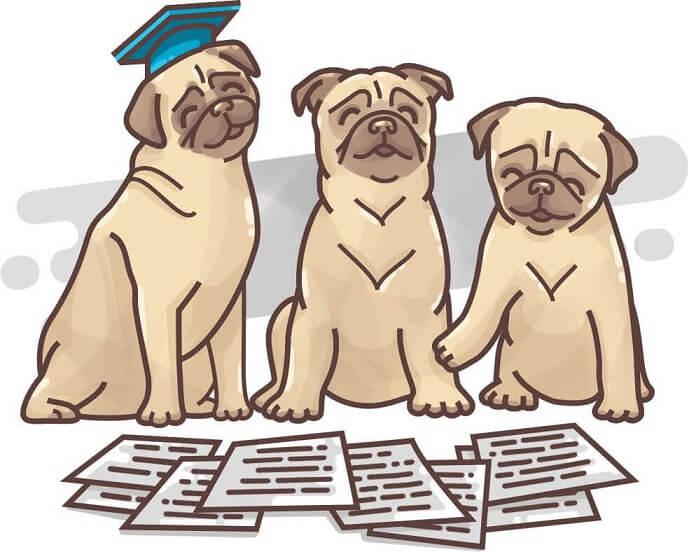 Judges reviewing essays