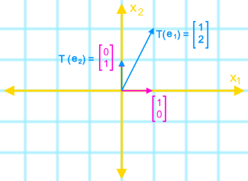 The matrix of a linear transformation