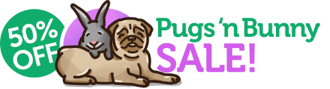Pugs and bunny sale